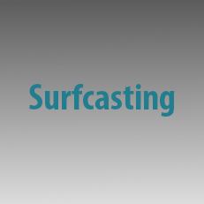 surfcasting-category