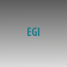 Μηχανισμοί Egi
