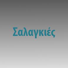 Σαλαγκιές
